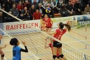 Die unglaubliche Siegesserie von Volley Toggenburg konnte auch von Schönenwerd nicht gestoppt werden. (Bild: Reinhard Kolb)