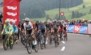 2015 fuhren die Rad-Profis von Gams aus nach Wildhaus - dieses Jahr wird der Bergpreis in Wildhaus von der anderen Seite aus in Angriff genommen. (Bild: Robert Kucera)
