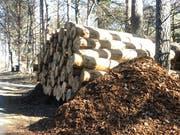 Derzeit kommt einiges an Holz zusammen. Es ist Hauptsaison der Holzernte. (Bild: Jesica Nigg)