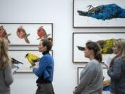 Die Serie «Angry Birds of America» von Ida Applebroog im Kunstmuseum Thun. (Bild: Keystone/PETER SCHNEIDER)