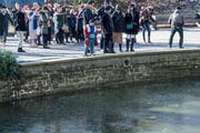 Touristen werfen Münzen in den Teich des Löwendenkmals. (Bild: Nadia Schärli, Luzern, 19. Januar 2019)
