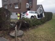 Das Auto kam mitten in einer Hecke zu stehen. (Bild: Kapo Uri)