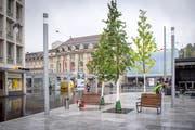 Auch aufgrund des Klimawandels werden Bäume im Stadtbild immer wichtiger. Im Bild der Kornhausplatz mit frisch gepflanzten, noch jungen Bäumen. (Bild: Urs Bucher - 31. August 2018)