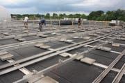 Rück- und Aufbau der Photovoltaikanlage auf dem Werkhofdach. (Bild: Markus Bösch)