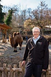 Zoodirektor Alex Rübel mitten in seinem grossen Zoo in Zürich. (Bild: Severin Bigler (Zürich, 26. Februar 2019))