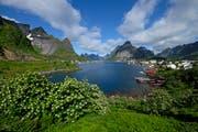 Das Dorf Reine in Norwegen hat rund 300 Einwohner und ist von einer faszinierenden Landschaft umgeben. (Bild: PD)