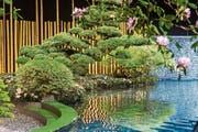 Mit 18 Sattelschleppern fuhr der Gartengestalter Reinhold Borsch an die Giardina, um einen Japangarten aufzubauen: inklusive Koi-Fischen und eines 180 Jahre alten Bonsai. (Bilder: PD)