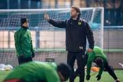 Heris Stefanachi leitet seit gut vier Monaten die Trainings des Promotion-League-Clubs Brühl. Bild: Urs Bucher