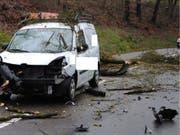 Wegen des Sturms stürzte ein Baum auf die Strasse, als der Lieferwagen vorbeifuhr. (Bild: Kantonspolizei Schaffhausen)