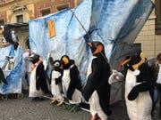 Die Pinguine sind los! (Bild: Sandro Renggli)