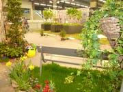 Schon an der Offa 2018 warb Entsorgung St.Gallen für «Urban Farming», das Gärtnern im städtischen Umfeld. (Bild: Entsorgung St.Gallen/Marianne Meili - 15. April 2018)