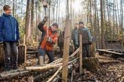 Die Wolfenschiesser Schüler bauen an ihrem Waldtag auch an einem «Waldsofa». (Bild: Eveline Beerkircher (Wolfenschiessen, 21. März 2019))