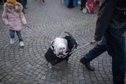 Szene vom St.Galler Wochenmarkt. (Bild: Benjamin Manser - 23. März 2019)