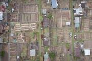 Auf dem Areal befinden sich heute auch Familiengärten. (Bild: Benjamin Manser, 25. März 2019)