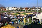 Eindrückliche Zuschauerkulisse am Rheintal-Oberländer Verbandsschwingfest in Grabs: 3700 Schwingfans wollten sich den ersten Höhepunkt der noch jungen Saison nicht entgehen lassen. (Bild: Robert Kucera)