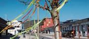 Vor allem vor den Läden sind die Bäume mit farbigen Bändeln dekoriert. (Bild: Bilder: Gert Bruderer)