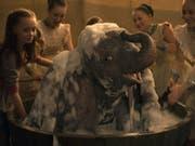 Der Fantasy-Film «Dumbo» hat am Wochenende vom 28. bis 31. März 2019 am meisten Besucher in die nordamerikanischen Kinos gelockt. (Bild: Disney)