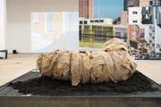 Dominic Neuwirths Installation vor Fassadenbildern Beat Streulis im Kunstraum Kreuzlingen. (Bild: Dieter Langhart)