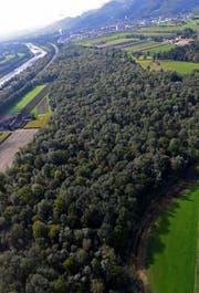 Das Sonderwaldreservat Ceres befindet sich zwischen Buchs und Haag, zwischen Autobahn und Hauptstrasse. (Bild: PD)