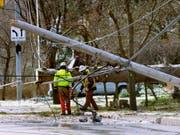 Stromleitungen verhinderten bei New York, dass ein abstürzendes Kleinflugzeug am Boden zerschellte. (Bild: KEYSTONE/AP The Star-Beacon/WARREN DILLAWAY)