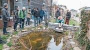 Auf der Suche nach dem Froschlaich: Der Naturgarten in Giswil soll anregen zum Gestalten des eigenen Gartens. (Bild: PD)