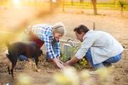 Diverse Netzwerke bringen motivierte Pensionäre zu hilfesuchenden Personen. (Bild: Fotolia)