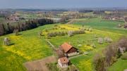 Der Hof Raach mit seinem Umland gehört zum Gemeindegebiet von Häggenschwil, ist aber umgeben von der Thurgauer Gemeinde Egnach. (Bild: Benjamin Manser, 15.April 2019)
