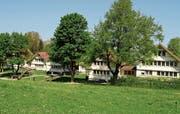 Die Häuser von Hans Fischli in Trogen. (Bild: Regina Kühne/KEY)