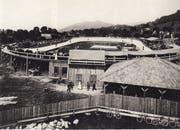 Die neue St.Galler Radrennbahn kurz nach der Eröffnung 1905. Rechts an der Anlage führte damals die Rehetobelstrasse vorbei. (Bilder: Sammlung Peter Uhler)