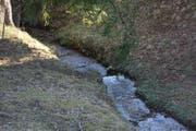 Die Bachsanierungen bleiben im Toggenburg ein Thema. Geregelt sind sie im kantonalen Wasserbaugesetz, das im kommenden Jahr revidiert und – falls sich keine Hindernisse in den Weg stellen – neu am 1. Januar 2021 in Kraft treten soll. (Bild: Beat Lanzendorfer)