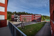 Der dreistöckige Modulbau (Bildmitte) beim Schulhaus Erlen ist fertig, wird aber noch nicht bezogen. (Bild: Eveline Beerkircher, Emmen, 24. März 2019)