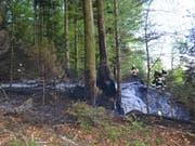 Unterhalb des Dietschibergs in Luzern sind über 1000 Quadratmeter Wald verbrannt. (Bild: Luzerner Polizei)
