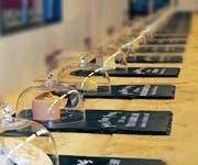 Degustations-Proben beim Käse-Sinnesparcours. (Bild: PD/Messe Luzern AG)