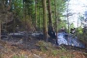Die Feuerwehr der Stadt Luzern löschte am Mittwoch einen Brand im Zimmeriwald. (Bild: Luzerner Polizei)