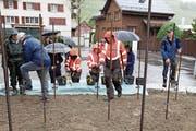 Die Rebhelfer hatten trotz Regen grossen Spass beim Pflanzen der verschiedenen Weinreben. (Bild: Susi Miara)