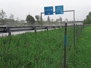 Ende 2020 wird hier eine Lärmschutzwand stehen: Der Bund plant Massnahmen für betroffene Gebäude entlang der Autobahn Höhe Anschluss Haag. (Bild: Armando Bianco)