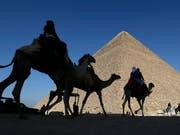 Was für Ägypten-Touristen ein Traum, ist für die Tiere um die Pyramiden von Gizeh bei Kairo die Hölle. (Bild: KEYSTONE/AP/HASSAN AMMAR)