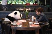 In einem Restaurant in Shenyang leisten den Kunden bei Bedarf Plüschpandas Gesellschaft. (Bild: Getty Images)