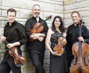 Eines von drei Streichquartetten am Festival: das Pacifica Quartet.Bild: Lisa-Marie Mazzucco/PD