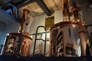 In der Brauerei Kloster Fischingen werden unter dem Namen Pilgrim jährlich rund 100'000 Liter Bier gebraut. (Bilder: Nicola Ryser)