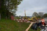 Im Hölzli entsteht in den nächsten zwei Jahren die neue Produktionsstätte der Molkerei Forster. (Bild: Philipp Wolf)