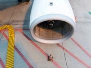 Turbinen sind vor dem Start oft schon im Leerlauf, wenn das Flughafenpersonal das Flugzeug belädt. Dabei entsteht Feinstaub, der die Gesundheit langfristig beeinträchtigen kann, wie eine neue Studie zeigt. (Bild: KEYSTONE/CHRISTIAN BEUTLER)