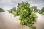 Die Thur führt auch bei der Murgmündung zwischen Warth-Weiningen und Frauenfeld viel Wasser. (Bild: Andrea Stalder, 21. Mai 2019)