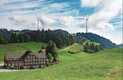 Die Initianten wollen an der Nutzung der Windenergie in Appenzell Innerrhoden festhalten. Eine Petition fordert zudem die Weiterverfolgung des Projektes zum Windpark im Gebiet Honegg-Oberfeld. (Visualisierung: PD)