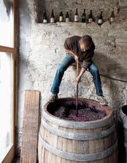 Winzer Markus Ruch rührt die Pinot-Noir-Maische im Gärfass regelmässig von Hand um. (Bild: Karin Hofer/NZZ)