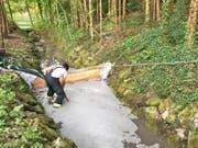 Ein Feuerwehrmann errichtet eine Sperre in einem Bach nachdem bei Schweizersholz TG rund 50 Kubikmeter Gülle ausgelaufen sind. (Bild: Kantonspolizei Thurgau)