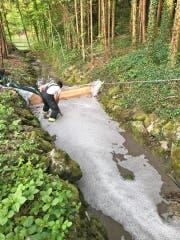 Die Feuerwehr Bischofszell im Einsatz. Zum Schutz von Fischen und der Natur wurde eine Bachsperre errichtet. (Bild: Kapo TG)