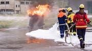 Sicherheit und Teamwork standen bei den Übungen am Feuer im Mittelpunkt. (Bild: Sascha Erni)