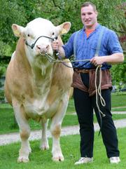 Joel Wicki gewinnt das Aargauer Kantonalschwingfest. (Bild: Melanie Gamma)