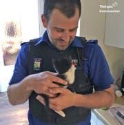 Happy End nach einer halben Stunde: Die Polizisten konnten das Kätzchen unbeschadet befreien. (Bild: Kapo Thurgau)